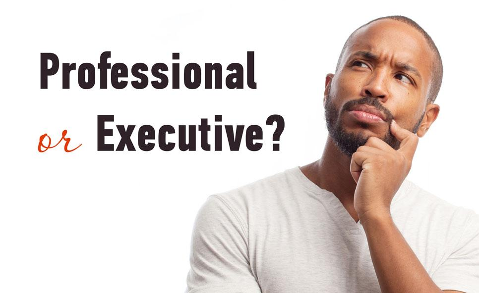 Professional Or Executive Resume Whats The Difference >> Professional And Executive Resumes